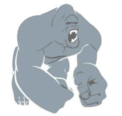 Chaos Kong Logo